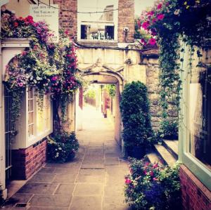 Gloucester Alley Way Flowers - 121wks